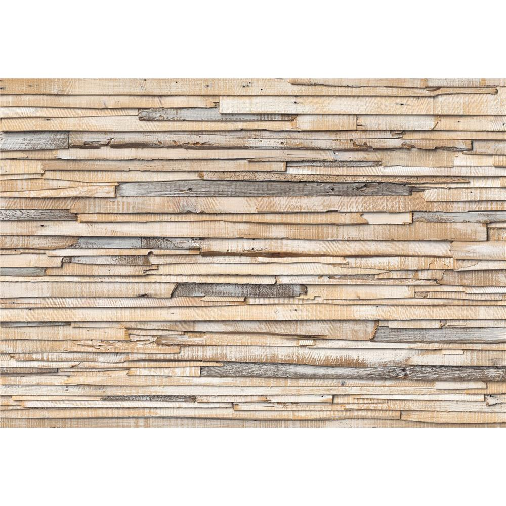 Komar by Brewster 8-920 Whitewashed Wood Wall Mural