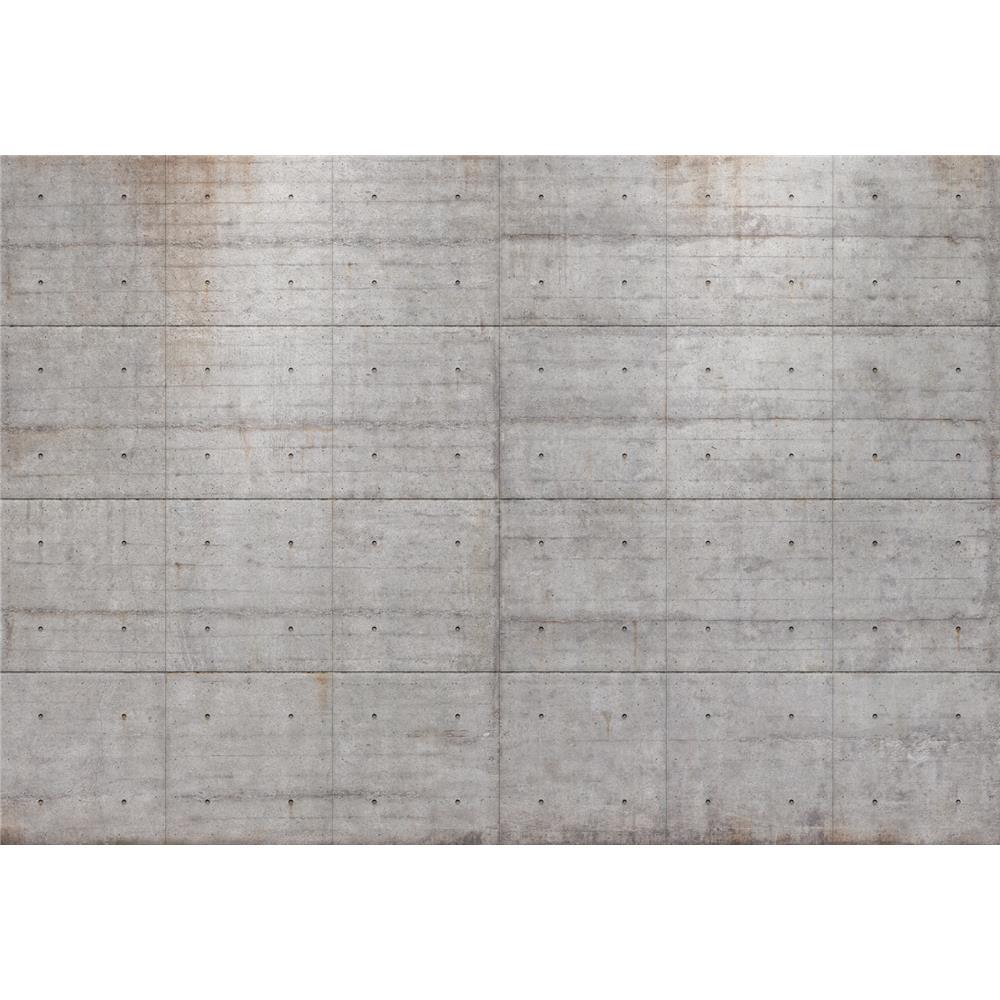 Komar by Brewster 8-938 Concrete Blocks Wall Mural
