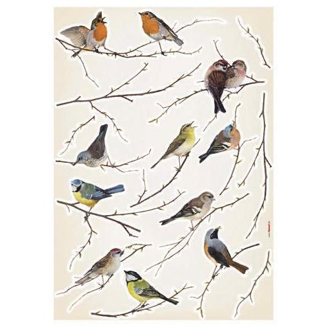Komar by Brewster LV19005 Komar Birds Wall Stickers