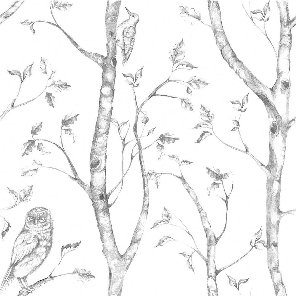 NuWallpaper by Brewster NU1412 NuWallpaper Gray Woods Peel And Stick Wallpaper
