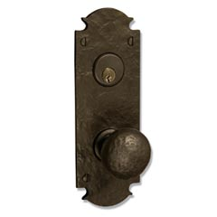 "Coastal Bronze 310-00-DBL Euro Plate 8"" Mortise any Lever, Knob Double Cylinder"