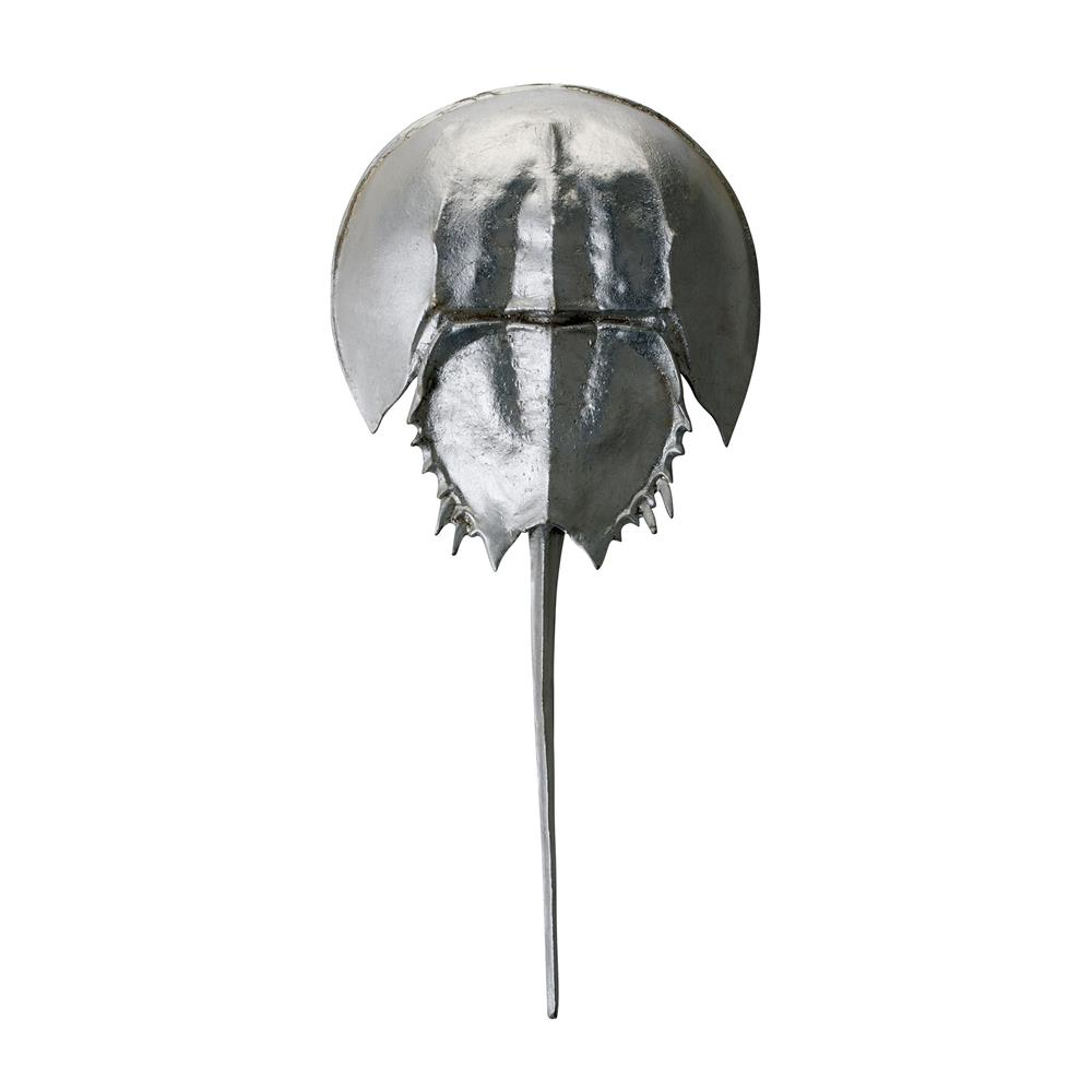 Dimond Home by Elk 228005 Silver Mica Horseshoe Crab in Silver