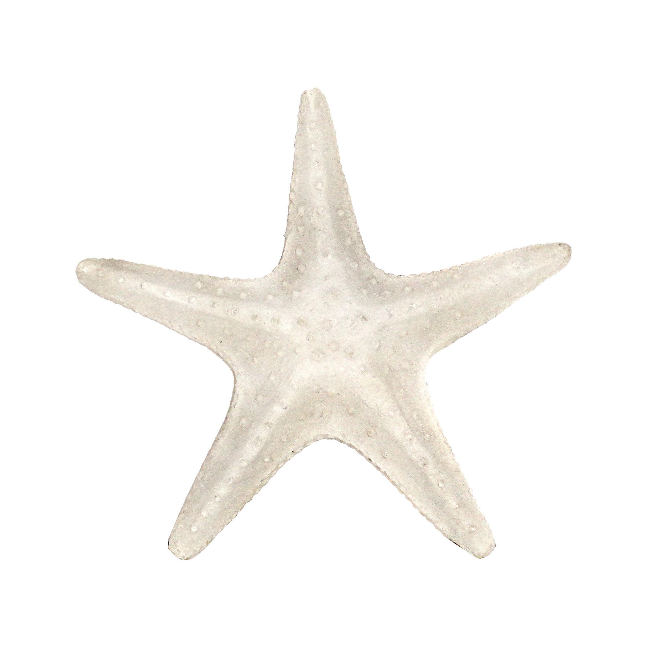 Pomeroy 525391 Textured Starfish