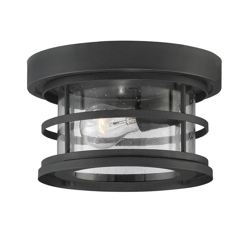 Outdoor Flush Semi Flush Mount Ceiling Lighting