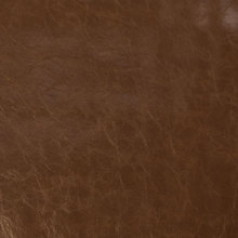 Silver State CHAPARRAL LEATHER Fabric in Leather