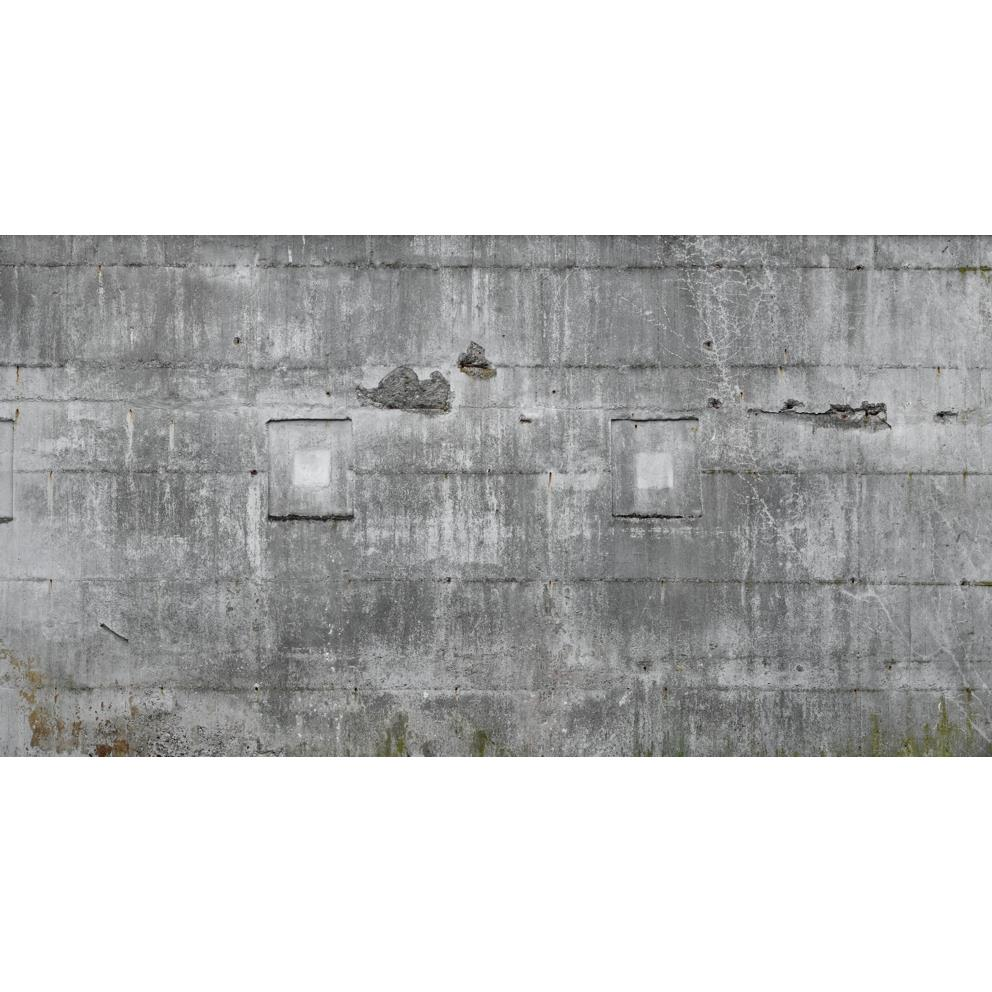 Washington Wallcoverings 445503 Factory II Dark Gray Distressed Concrete Wall Mural 18.3 Ft X 10 Ft